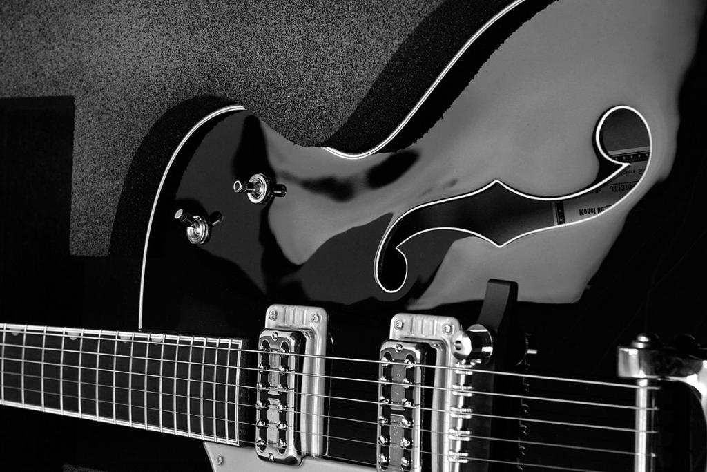Gitarrenkoffer_008