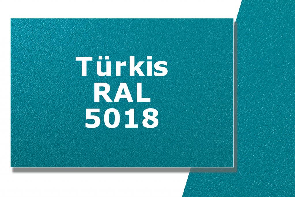 megacase-türkis_ral_5018